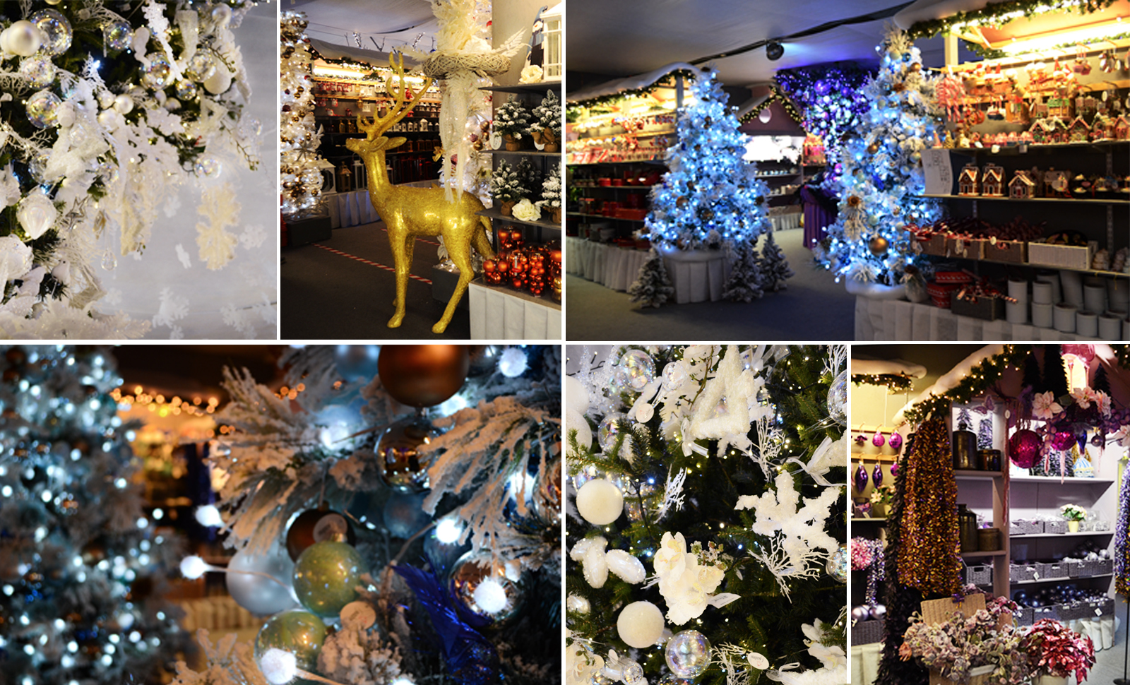 Addobbi di Natale a Treviso Bardin Garden Center Villorba - Tweedot