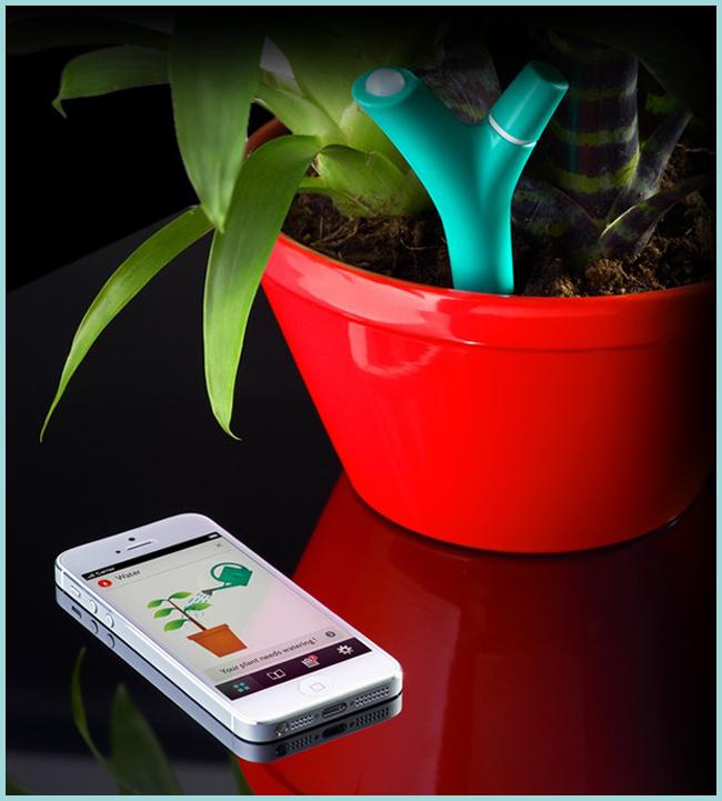 Tweedot blog magazine - Flower Power cura piante applicazione iphone e ipad