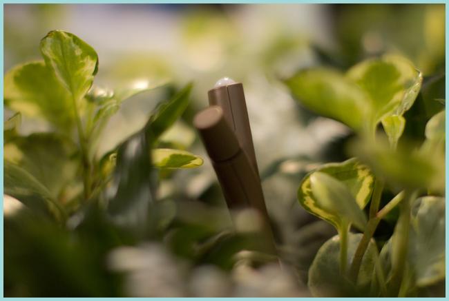 Tweedot blog magazine - piante rigogliose nell'era dell'hi tech con Flower Power di Parrot