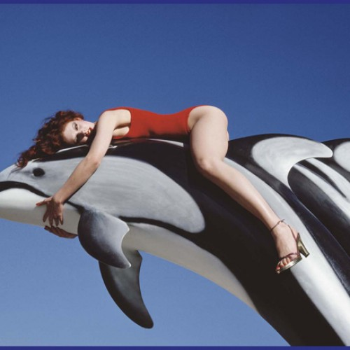 Tweedot blog magazine - Guy Bourdin dolphins