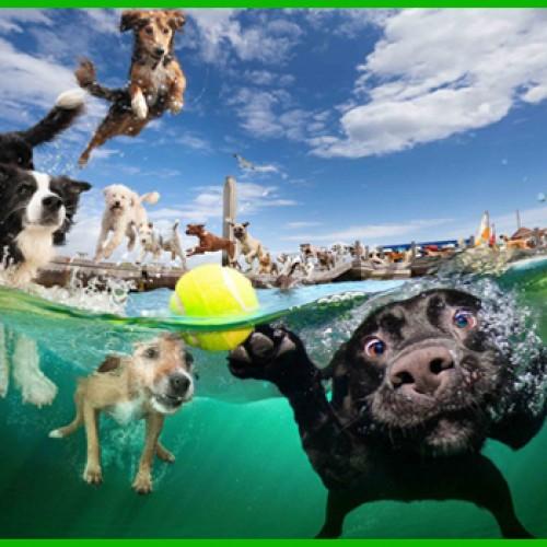 Tweedot blog magazine - voglia di vacanze - rubrica di alessio cadamuro fotografo