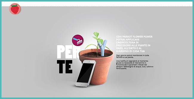 Tweedot blog magazine - piante da vaso e giardino - Flower Power Parrot nuova cura per le piante