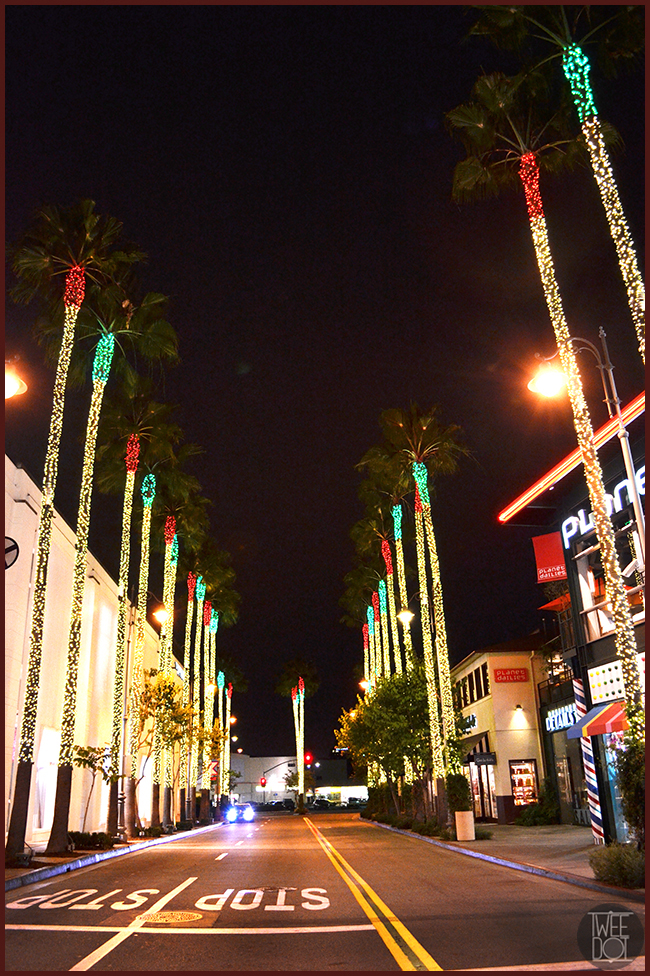 Tweedot blog magazine - Los Angeles Christmas palm at the Grove Farmer's Market