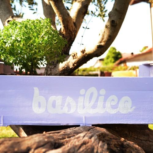 Tweedot blog magazine - Riciclo Creativo l'Orto sul Balcone