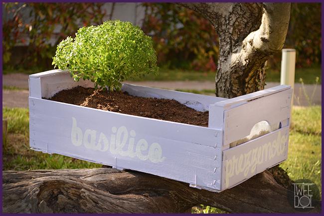 Tweedot blog magazine - ciotola di erbe aromatiche fai da te