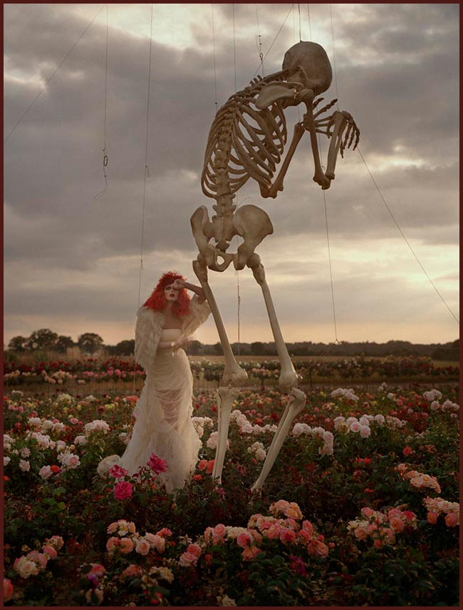 Tweedot blog magazine - Tim Walker photography skeleton