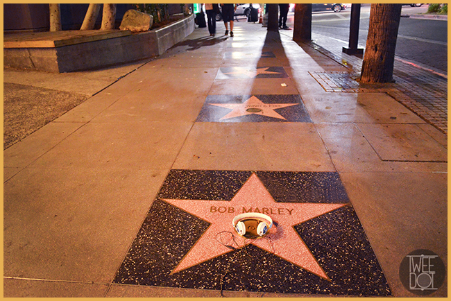 Tweedot blog magazine - House of Marley headphones - Bob Marley Walk of Fame Hollywood