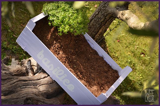 Tweedot blog magazine - come fare un piccolo orto shabby chic da tenere nel balcone sulla finestra in terrazzo e in giardino