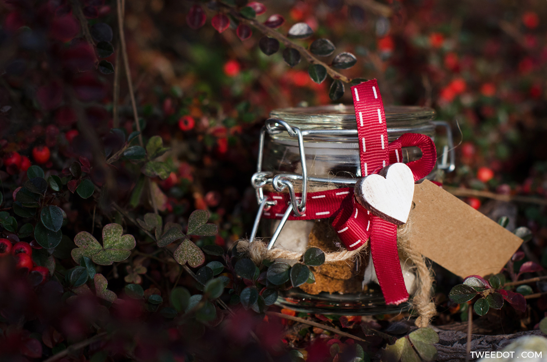 Idee regalo natale fai da te tweedot - Immagine di regali di natale ...